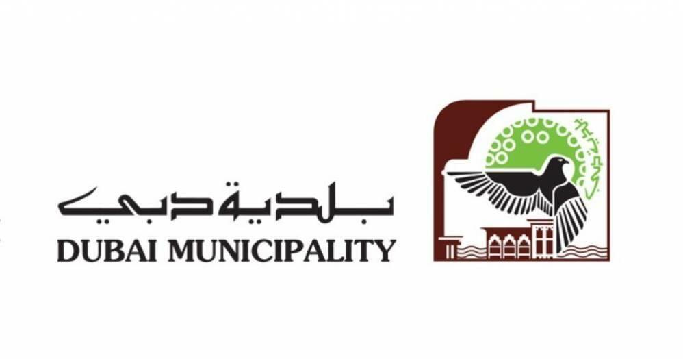 وظائف شاغرة في بلدية دبي مختلف التخصصات