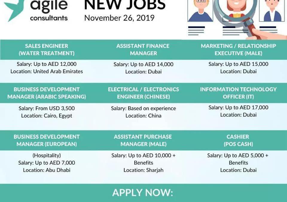 وظائف شركات دبي | موقع باقة للتوظيف